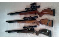 The three English Lords - AA S400, AA S510, Falcon Prarie