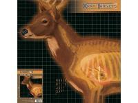 Champion X-Ray Paper, Image 2