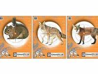 Champion Critter Series, Image 2
