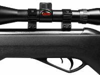 Gamo Silent Cat w/ mounted scope.
