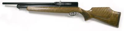 Webley Raider 10